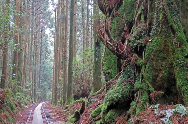 Yukoshima